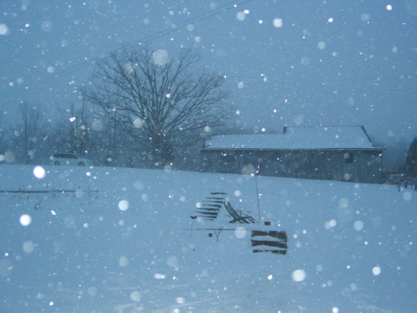 blizzard05sm