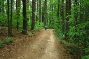 Hiking in NC