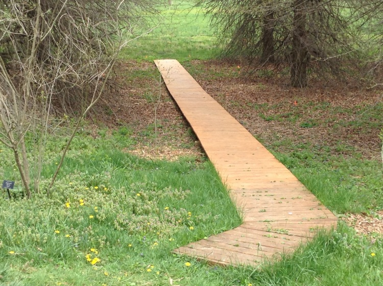 Walkway, and Possibility for Our Own Trail