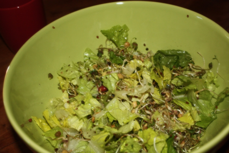 Salad using the sprouts