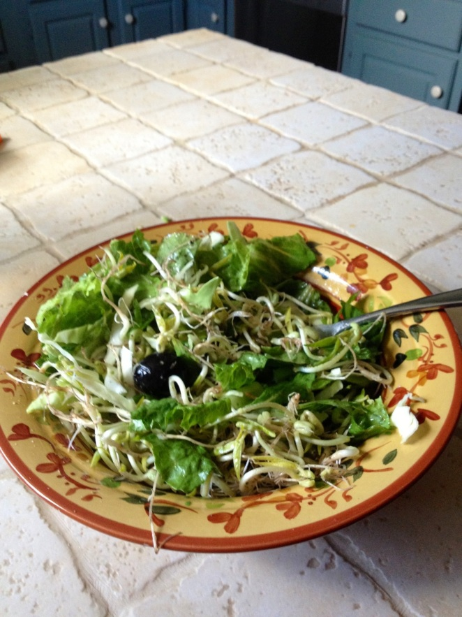Salad with sprouts