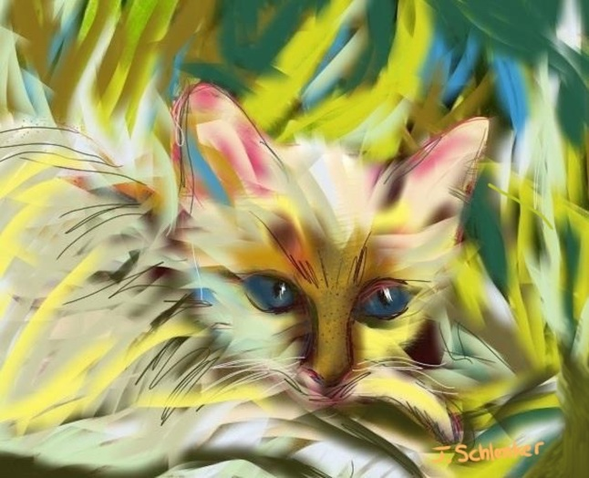 Abstract Cat in Grass