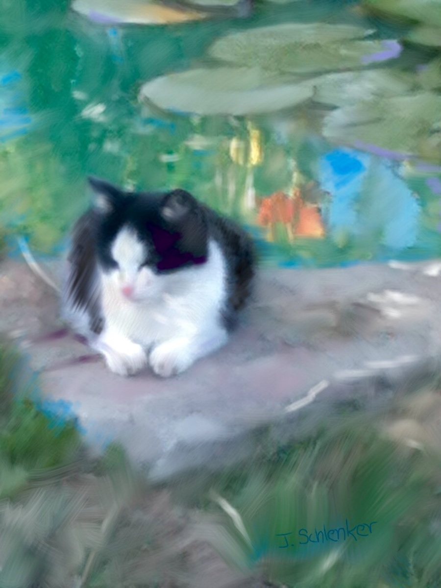 Cat by Pond