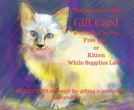 gift-card-2