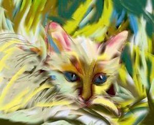 catingrass